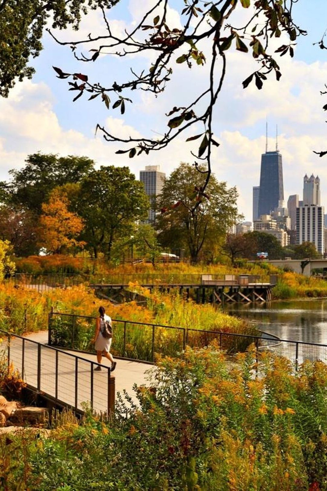 The Ultimate Chicago Fall Bucket List