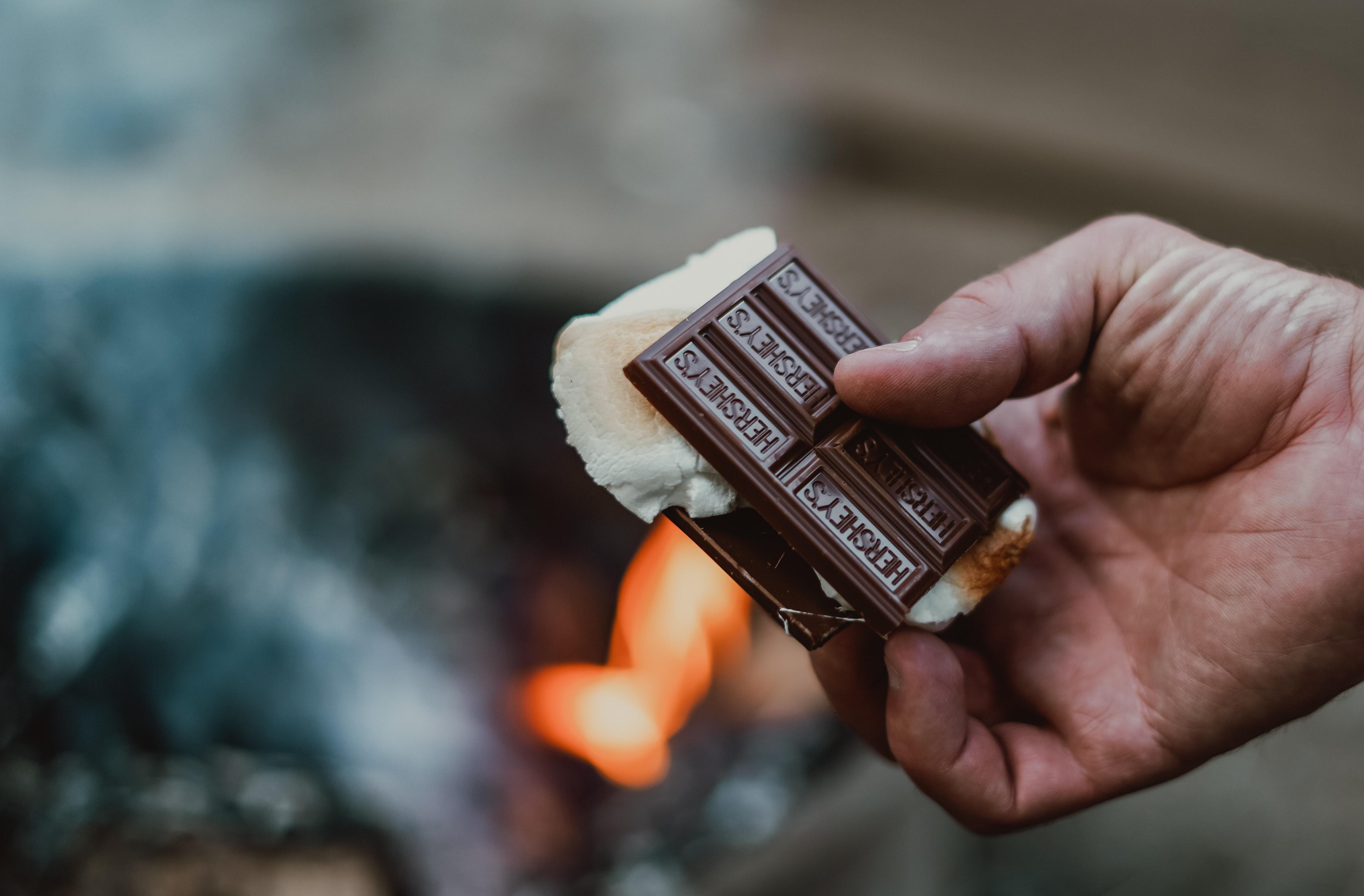 Camping At Home: S'mores Cupcakes