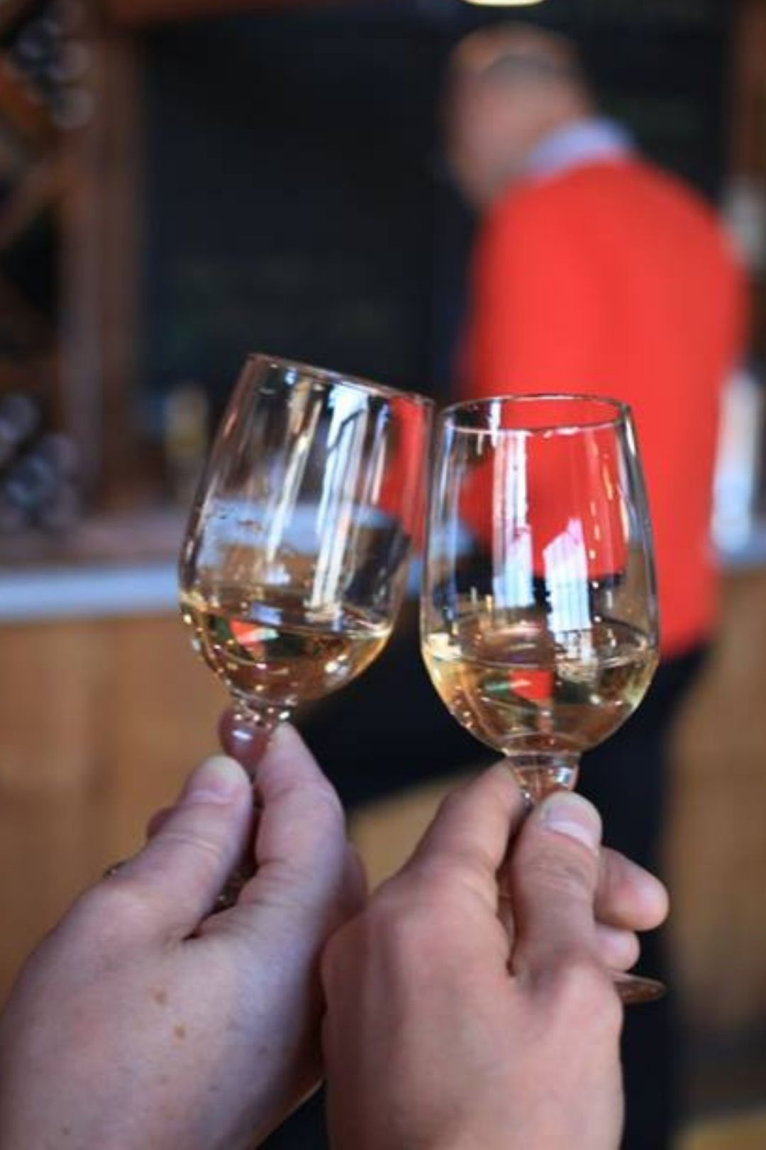 Long Island Winery Tour from New York City